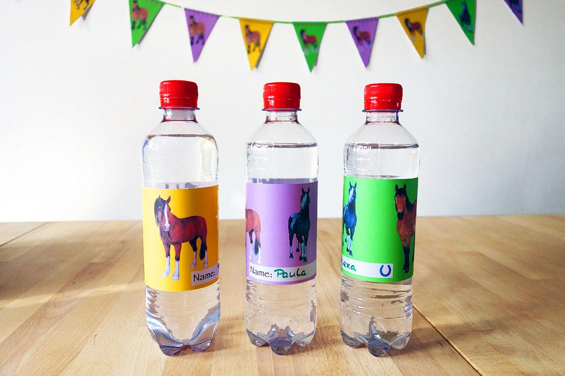 Pferdegeburtstag Trinkflaschen Etiketten